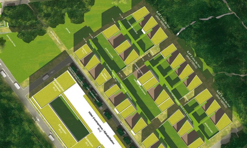 zoom sur l'organisation urbaine