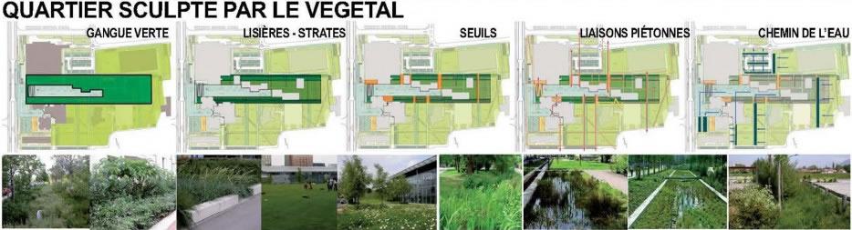 un quartier sculpté par le végétal